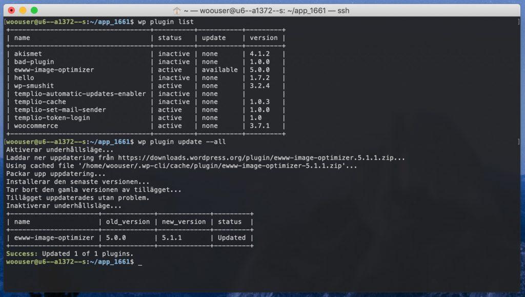 wp plugin update --all